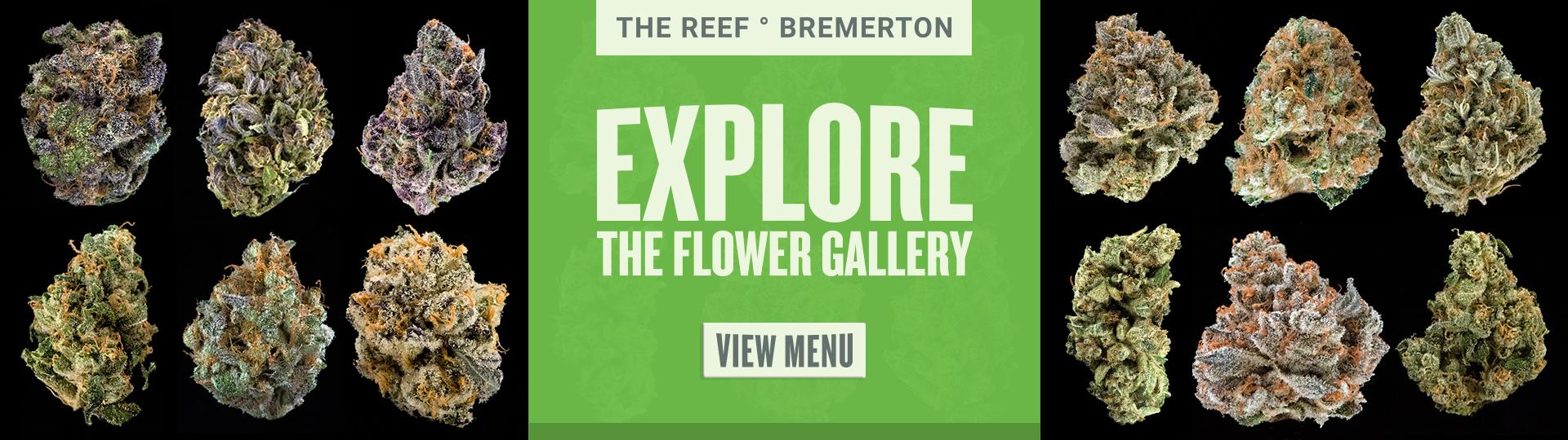 Bremerton gallery