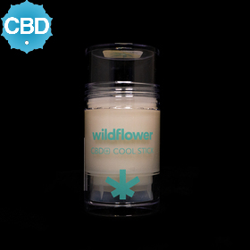 CBD Mini Cool Stick