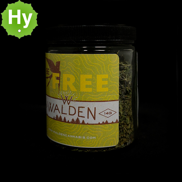 Walden free trim