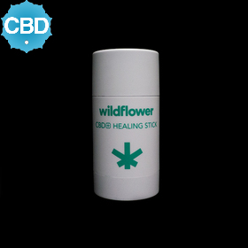 CBD Mini Healing Stick