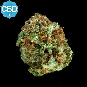 Platinum CBD