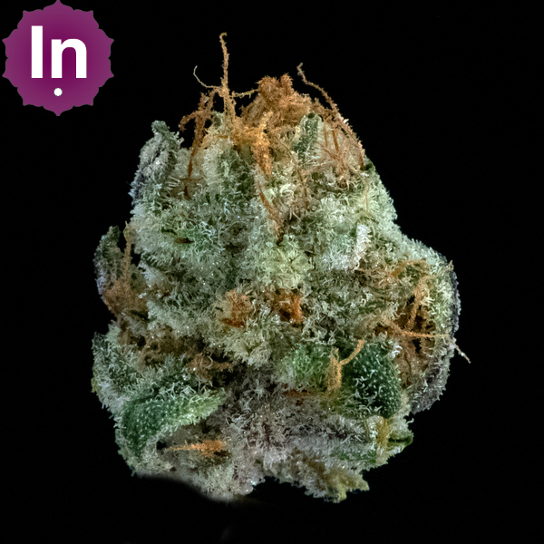 Bellevue cannabis cookies supreme