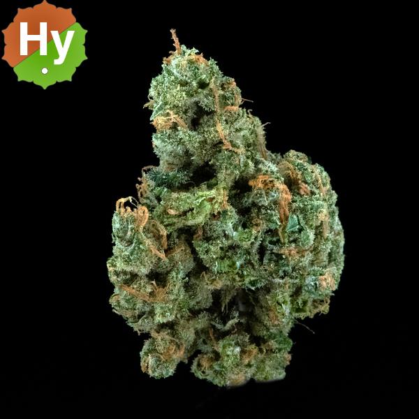 The happy cannabis lemon cheesecake