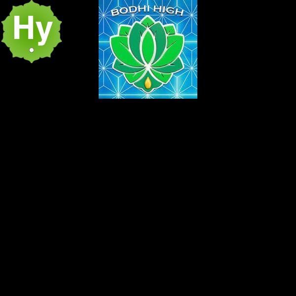 Bodhi high logo