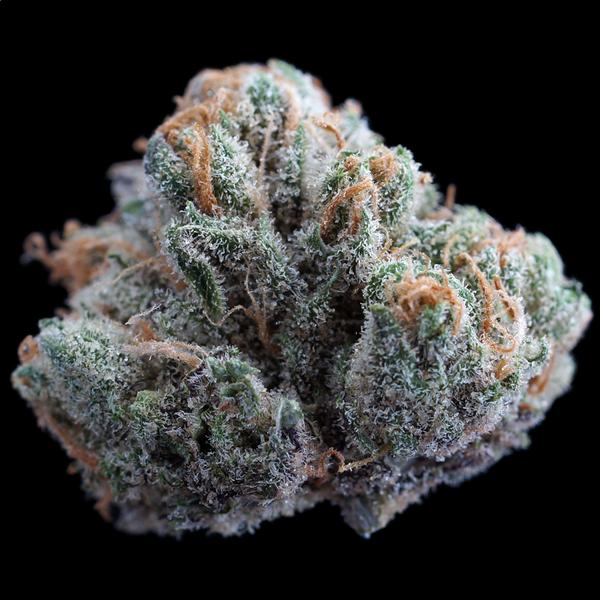 Sound cannabis 9 lb hammer 3