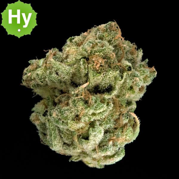 Washington cannabis comany lemon kush