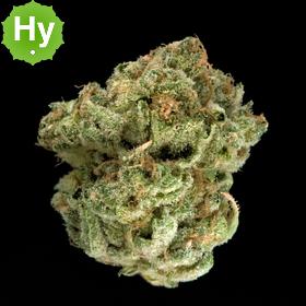 Washington Cannabis Company