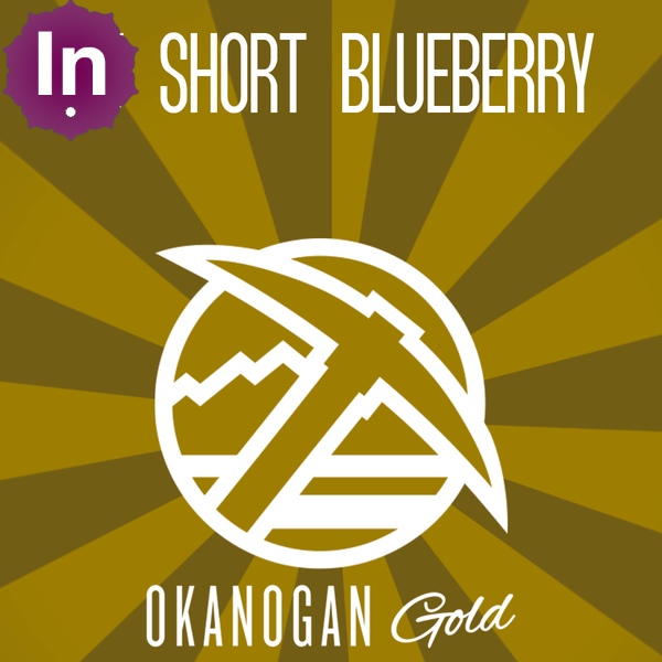 Okanogan gold dj short blueberry wax