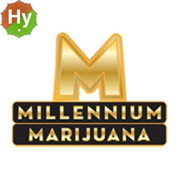 Millennium logo1