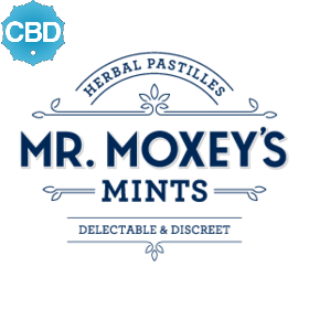 CBD 1:1 Cinnamon Mints