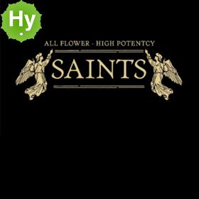 SGB/ Saints