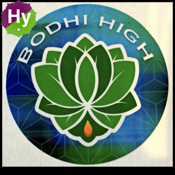 Boddhi high logo