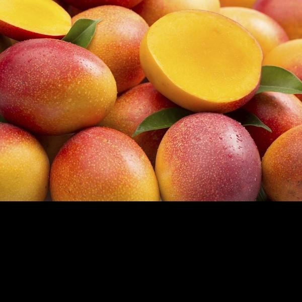 Bg mango 01